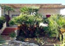 antica-sicilia1